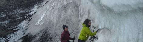 Descubren un mundo de bacterias bajo el hielo antártico