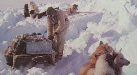 Navegando por la Bahía Melville con cazadores inuit