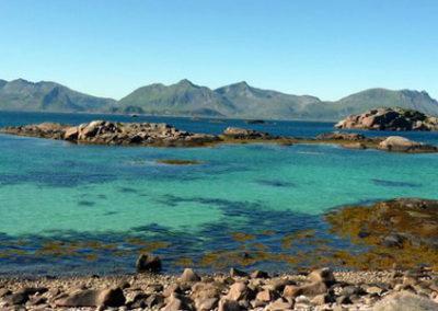 Lofoten Tromso y Ballenas noruega tierras polares