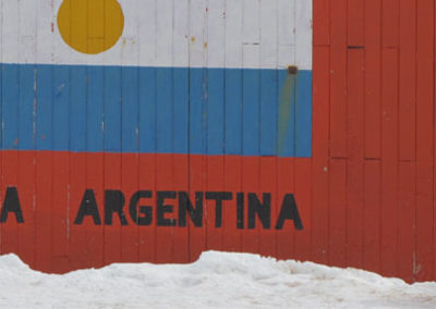 Antartida_Pinguino