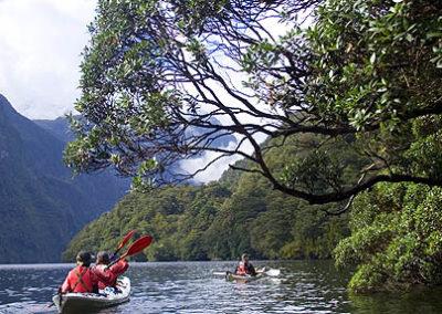 kayak-nueva-zelanda