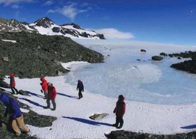 Antarctic Odyssey 2 B