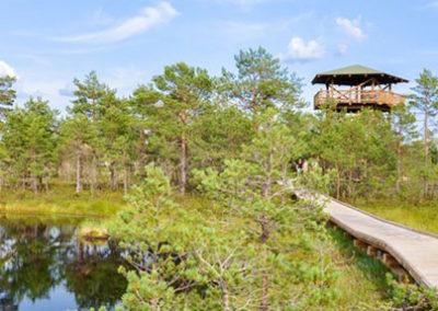 Viru-bog-Parque-Nacional Lahemaa en Estonia