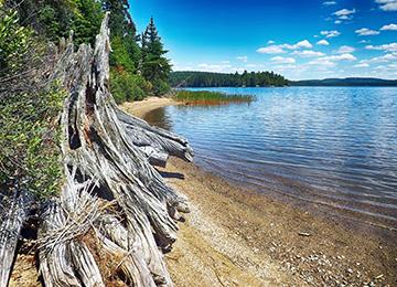 Algonquin-lago