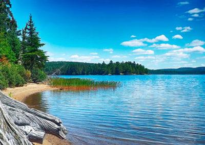 algonquin-lake-ontario
