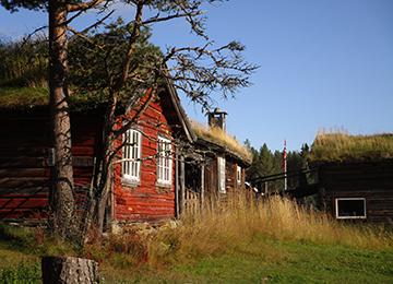 Dovrefjell-Oppdal-Kungsvold