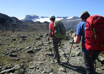 Trekking Dovrefjell
