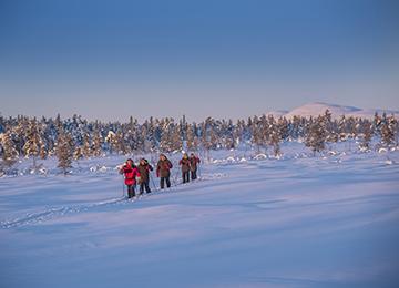 Raquetas de nieve Laponia Suecia