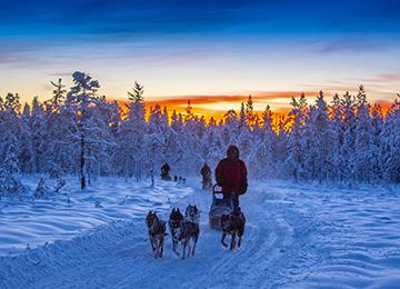 viaje laponia sueca