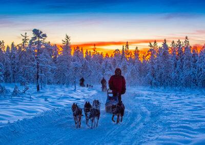 Laponia sueca viaje trineo de perros y motonieve